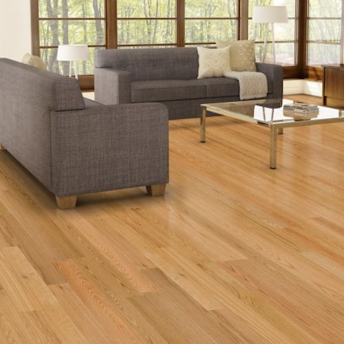 Red oak engineered 3 1 4 in square edge by lauzon wood for Square wood flooring