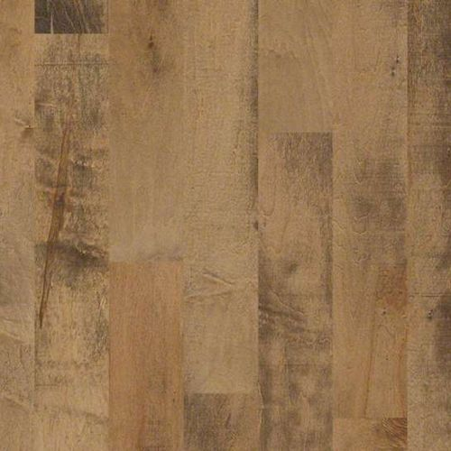 Addison Maple 5 In By Shaw Hardwood Floors