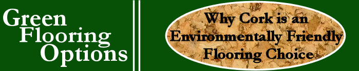 why cork is an environmentally friendly flooring choice