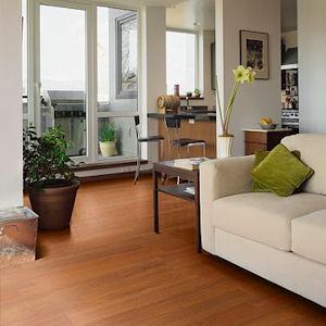 Shaw Laminate Flooring timberline 786 lumberjack laminate flooring by shaw Collection Shaw Laminate Specials